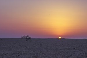 viaggio nel Bahrain