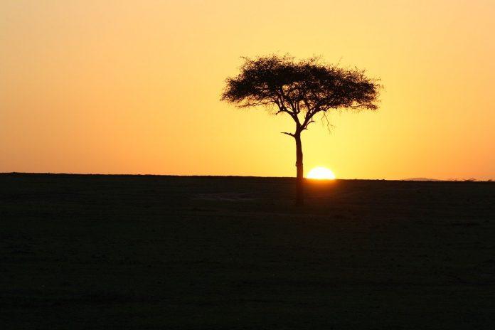 viaggio nel masai mara